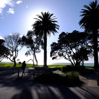 ニュージーランドで新生活スタート